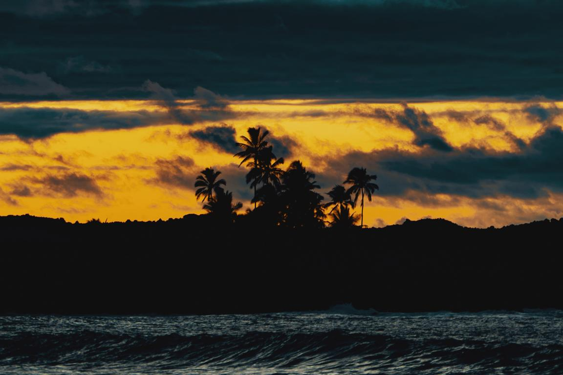 Palmen im Sonnenuntergang am Strand auf Hawaii