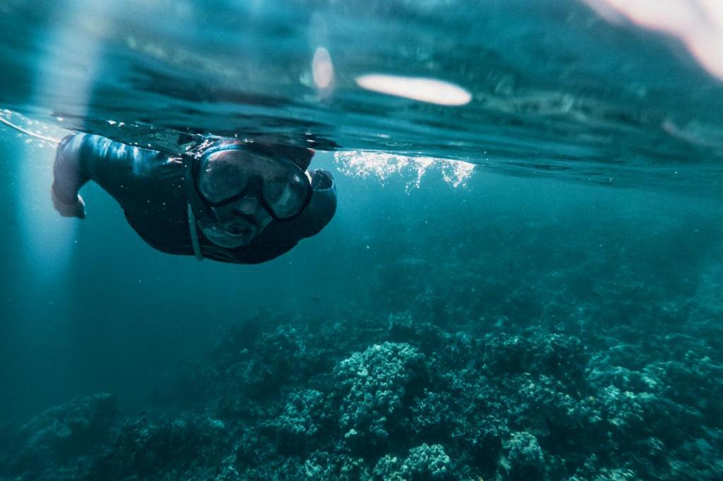 Schnorcheln im Meer vor der Big Island Captain Cook